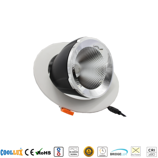 COOLLUX 12W 24W 36W 50W DL023 ROUND TRUNK LIGHT